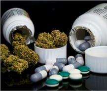 medical cannabis law